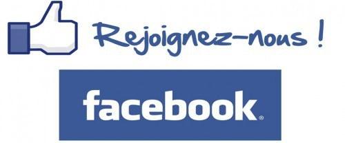 page 13Facebook logo biblio.jpg